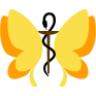 Wie man auf Heilpraktiker-Foren einen Beitrag erstellt (Video)